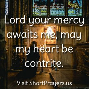 Lord your mercy awaits me, may my heart be contrite.