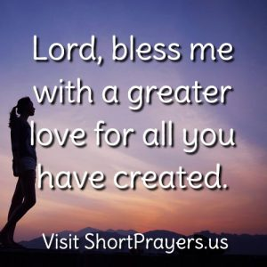 Lord, bless me with a greater love for all you have created.